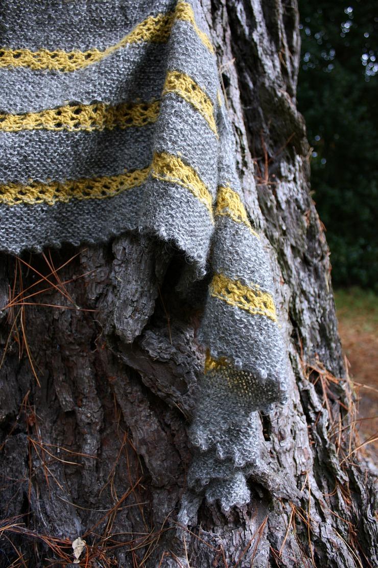 hilltop-shawl-on-monterey-pine