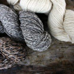 Undyed Shetland Wool