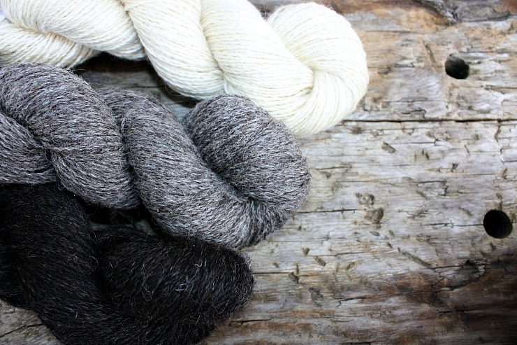 Black Isle Yarns, from top- bfl~cotswold, Frankenstein (bfl~cotswold~cheviot), Monkeyface (hebridean~gotland_)