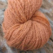 Curiosity dyed with Sorghum