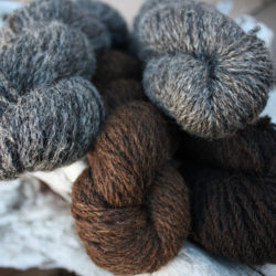 Zwartbles blends clockwise from top left ~ cheviot, alpaca, mohair and pure zwartbles